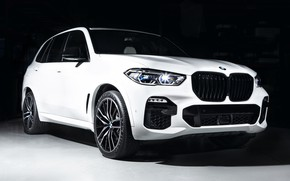 Picture BMW, White, 2018, G05, Darknes