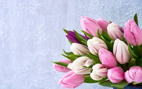 Picture flowers, bouquet, tulips, pink, fresh, pink, flowers, tulips, spring