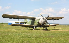 Picture The plane, An-2, Maize, Annushka