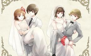 Picture wedding, bride, Mobile Suit Gundam, grooms