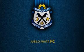 Picture wallpaper, sport, logo, football, Jubilo Iwata