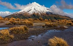Picture mountain, New Zealand, New Zealand, Taranaki