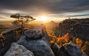 Picture autumn, the sun, rays, trees, landscape, sunset, mountains, nature, rocks, Germany, Saxon Switzerland, array, Bastei, …
