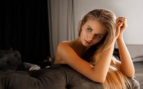 Picture sponge, Alena, Alexander Sasin