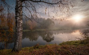 Picture autumn, the sun, rays, landscape, nature, fog, river, tree, morning, birch, Andrei