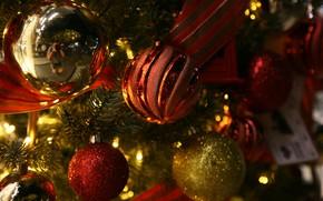 Picture winter, balls, holiday, balls, Christmas, New year, tree, needles, Christmas decorations, Christmas decorations, новогодние декорации