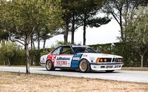 Picture Tree, Road, BMW, Wheel, Drives, Classic car, Sports car, 1983, BMW 635 CSi, BMW 635 …