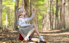 Picture forest, toy, doll, birds