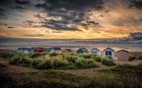 Picture sea, shore, houses