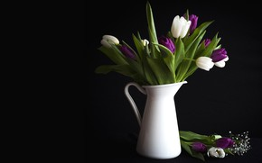 Picture flowers, tulips, vase, black background