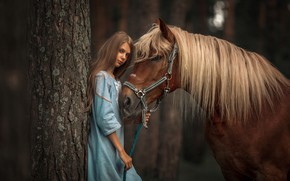 Wallpaper look, tree, horse, horse, dress, mane, girl