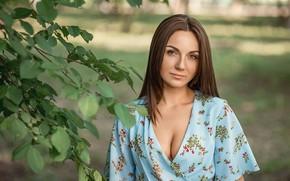 Wallpaper dress, model, look, A Diakov George