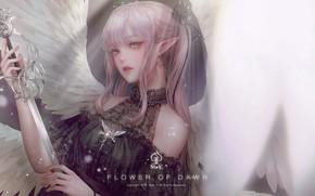 Picture look, girl, elf, sword