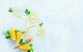 Picture leaves, pattern, lemon, food, still life, honey, citrus