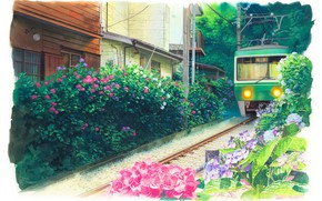 Picture Japan, tram, hydrangea, tram tracks, green trees, summer day, residential homes, by Kita Hideaki