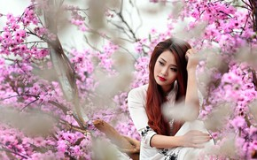 Picture reverie, red hair, red hair, cherry blossoms, blurred background, charm, cherry blossom, femininity, pensive, charm, …