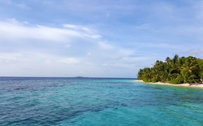 Picture beach, tropics, palm trees, the ocean, relax, Maldives