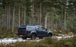 Picture pickup, 2018, coniferous forest, Isuzu, Huntsman, D-Max, UK version