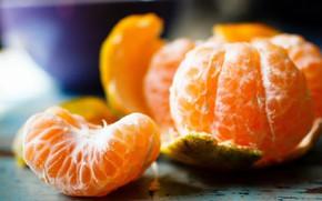 Picture Wallpaper, Mandarin, Fruit, Food, Citrus