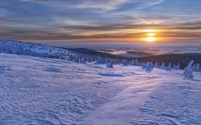 Picture winter, snow, mountains, sunrise, dawn, morning, Czech Republic, Czech Republic, Jeseníky Mountains, Mountains Jeseníky