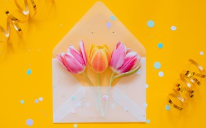 Picture holiday, eggs, Easter, tape, tulips, the envelope