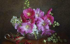 Picture bouquet, red, currants, mallow