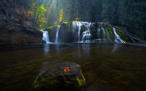 Picture autumn, forest, rocks, leaf, waterfall, cascade