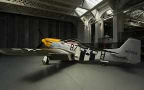 Picture Mustang, P-51, Hangar, Fighter