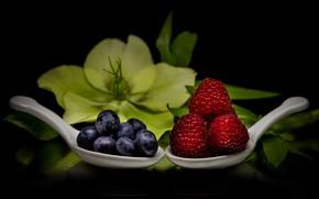 Picture flower, macro, berries, raspberry, blueberries, black background, spoon