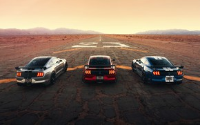 Picture road, the sky, asphalt, strips, mountains, machine, style, markup, coupe, spoiler, start, Ford Mustang Shelby …