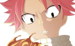 Picture face, fire, scarf, guy, Fairy Tail, Natsu Dragneel, Natsu Dragneel, by alexanj