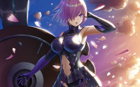 Picture girl, the wind, Fate / Grand Order, The destiny of a great campaign