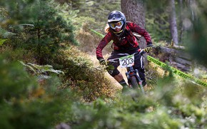 Picture forest, track, tape, cyclist, Cannondale Enduro Tour