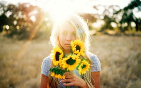 Picture rays, light, flowers, sunflower, blonde