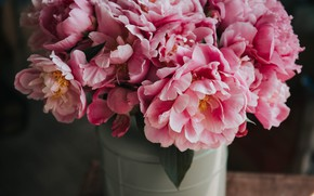 Picture flowers, bouquet, flowers, peonies