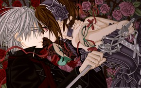 Picture roses, sword, mask, Vampire Knight, zero