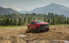 Picture forest, red, Chevrolet, polygon, pickup, Silverado, Z71, Trail Boss, 2019, Silverado LT