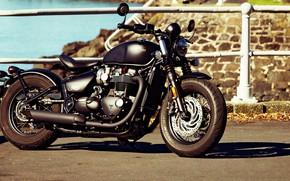Picture Triumph, Bonneville, Motorbike, Bobber
