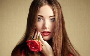 Picture look, girl, face, hair, rose, portrait, beautiful, Oleg Gekman