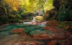 Picture autumn, forest, river, rocks, Spain, Spain, Navarre, Navarre, River Urederra, Urederra River