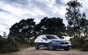 Picture trees, BMW, 3-series, universal, 320d, 3P, 2020, UK version, G21, xDrive Touring
