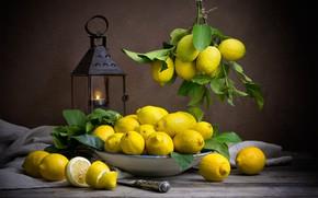 Picture the dark background, food, lantern, dishes, fruit, still life, lemons, composition