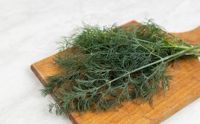 Picture table, dill, cutting Board