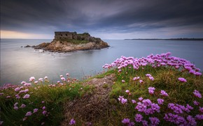 Picture flowers, clouds, abandoned castle