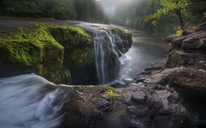 Picture forest, river, stone, waterfall, waterfall