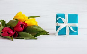 Picture flowers, holiday, gift, tulips