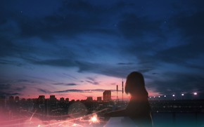 Picture roof, girl, the city, twilight
