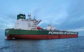Picture Sea, Avenue, The ship, Tanker, Samuel, Совкомфлот