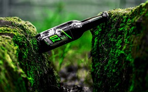 Picture stones, bottle, moss, brand