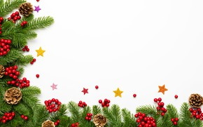 Picture decoration, berries, New Year, Christmas, Christmas, New Year, decoration, xmas, Merry, fir tree, fir-tree branches